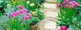 gray-concrete-patio-paver-in-flowering-tulip-garden-17