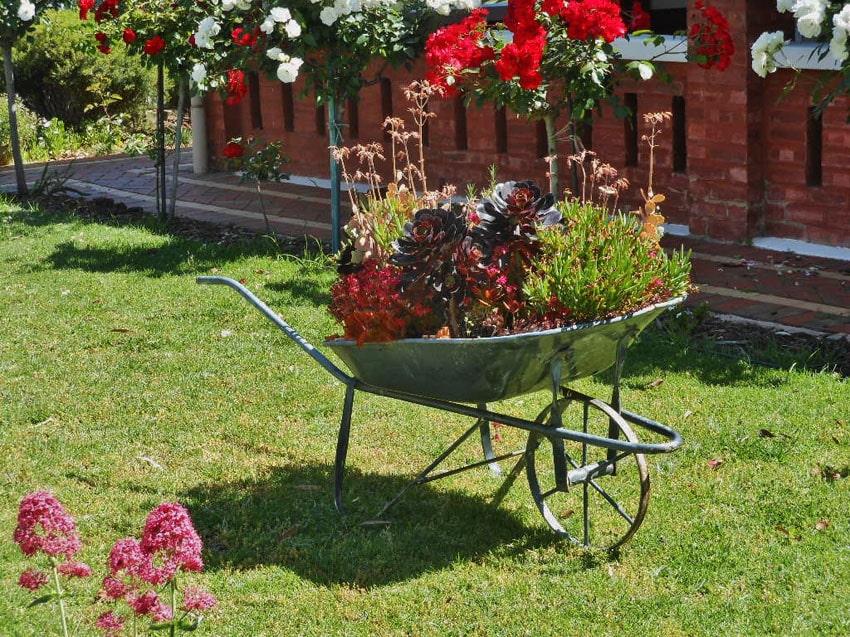 Metal wheelbarrow for garden planter