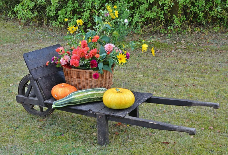 Wheelbarrow cart for garden decoration