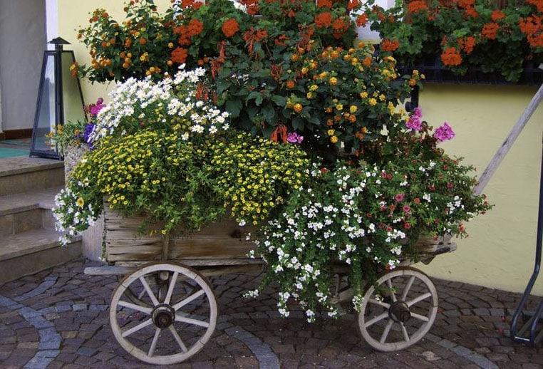 Wood wagon full of flowers
