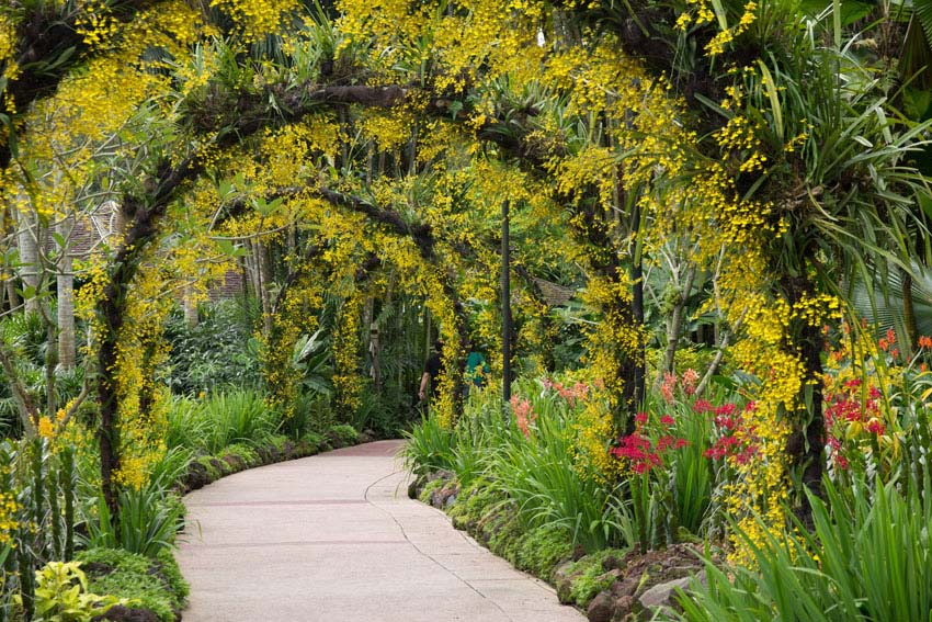 Floral archway over path