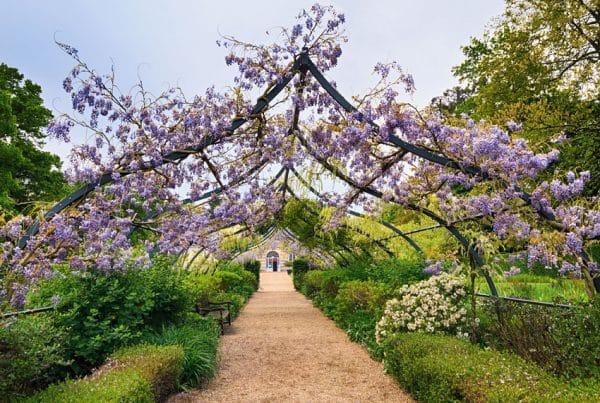 Beautiful Arbor Designs Garden Ideas Designing Idea