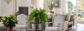cottage-living-room-with-houseplants-and-white-french-furniture