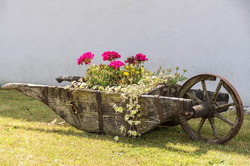 Antique wheelbarrow garden planter box