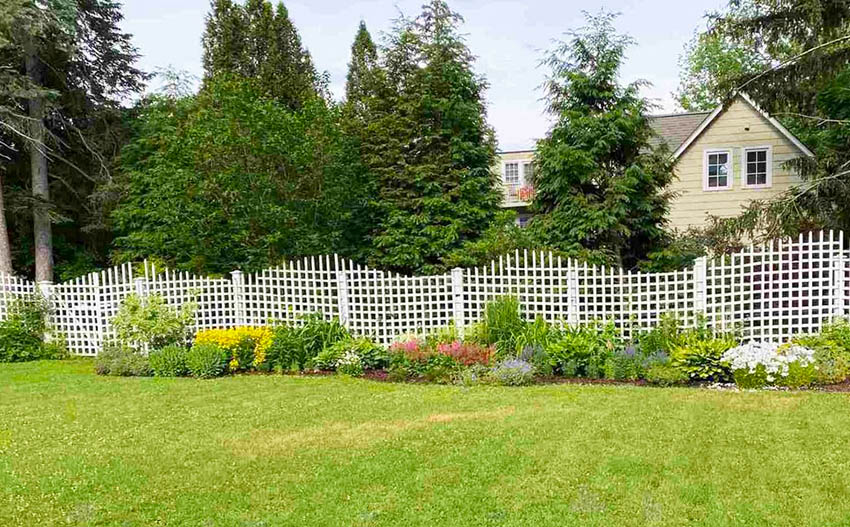 Custom white lattice fence in garden