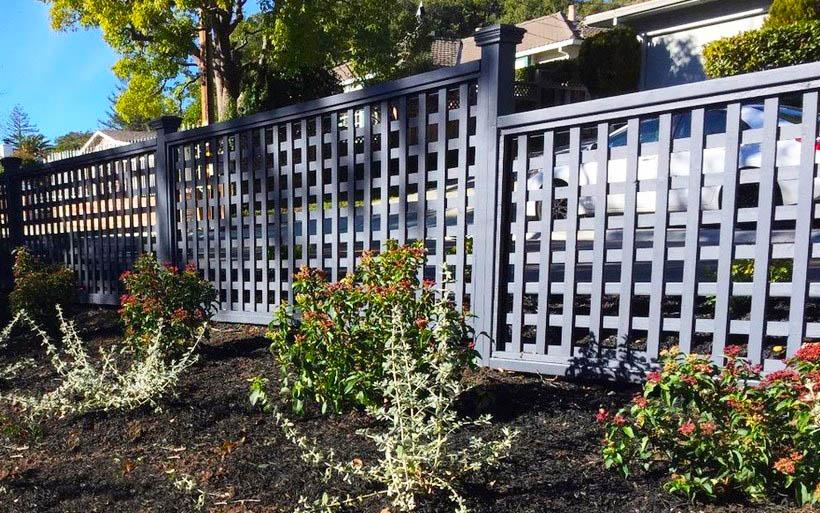 Square lattice fence panels in backyard