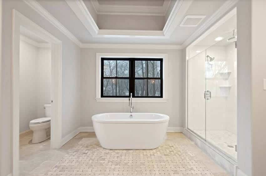Bathroom with tray ceiling freestanding tub and walk in shower