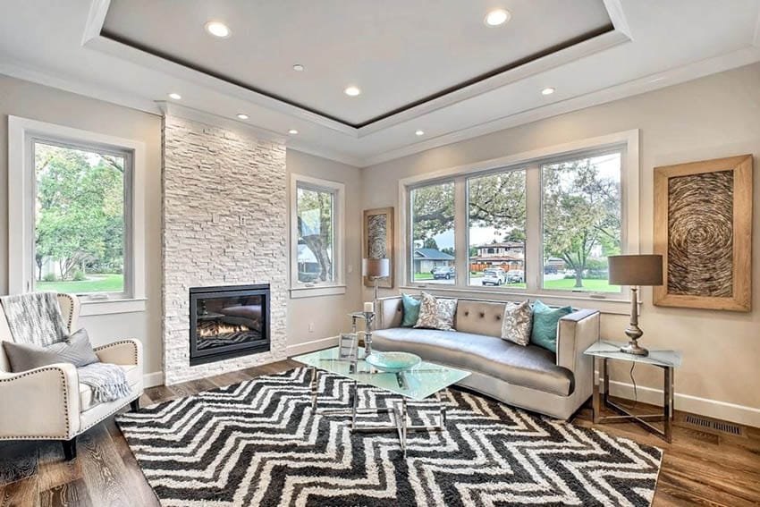 Contemporary living room with tray ceiling wood flooring and fireplace