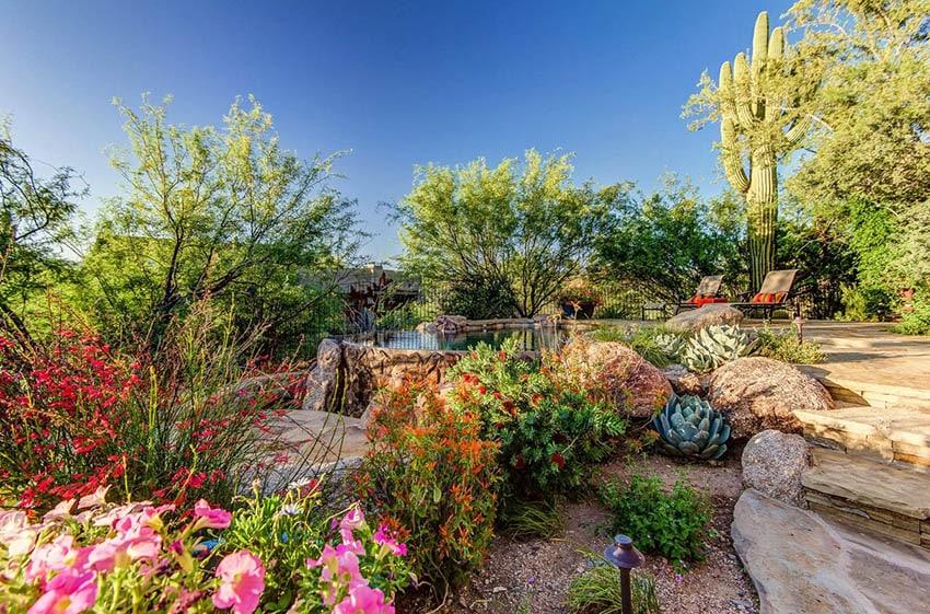 Desert landscape backyard with plants