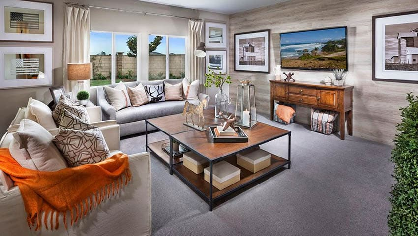 Transitional living room with decor
