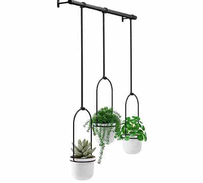 Hanging potted plants for kitchen window