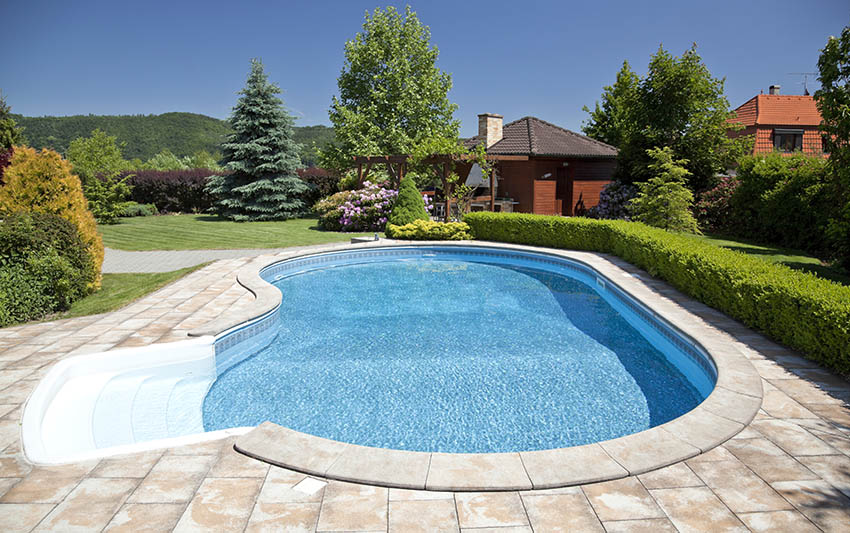 Backyard swimming pool with rounded design low steps concrete deck