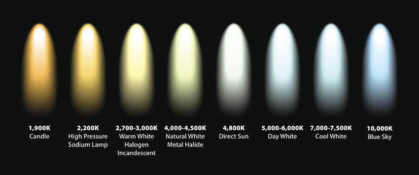 Light bulb kelvin color temperatures