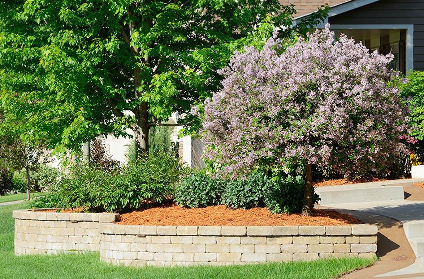 Garden landscaping with cedar mulch