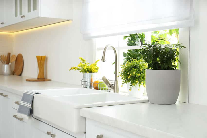 Kitchen with direct sun houseplants in window