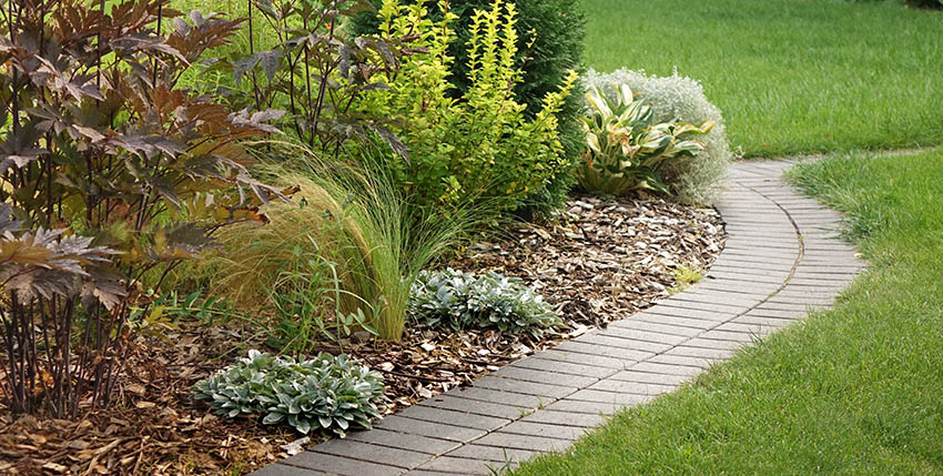 Landscaping with wood chip mulch around plants shrubs
