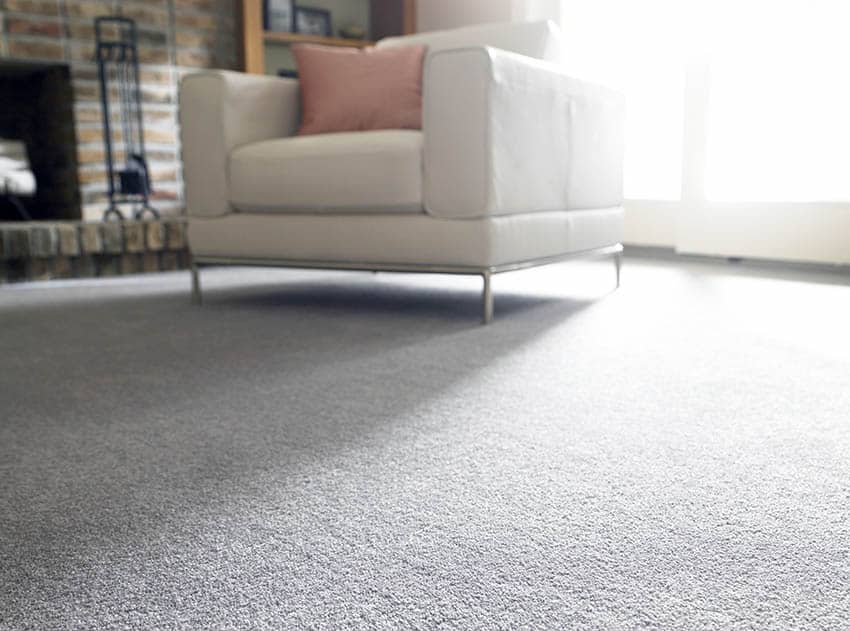 Living room with polyester carpet