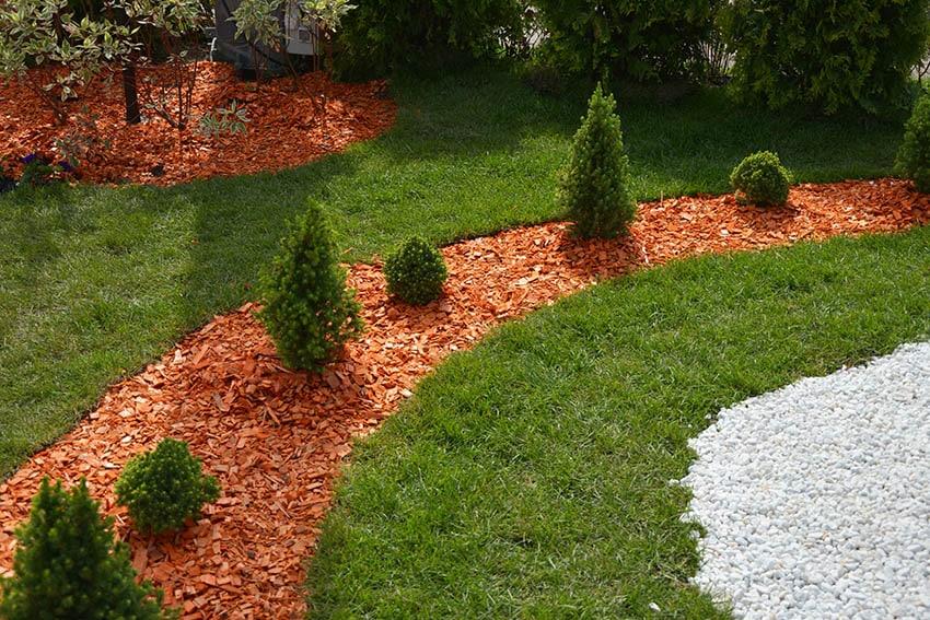 Pine wood chip mulch around shrubs in garden