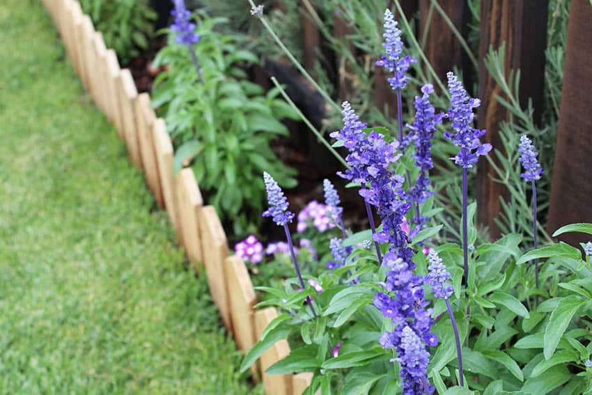 Wood mini picket fence garden border