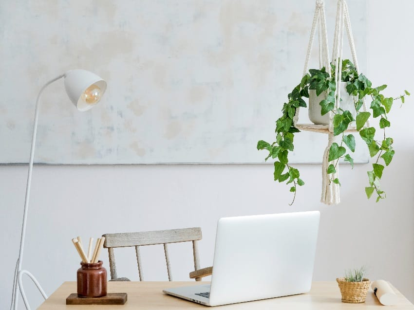 Stylish and boho home office video conference background with wooden desk laptop white lamp macrame shelf and desk supplies and hanging plant