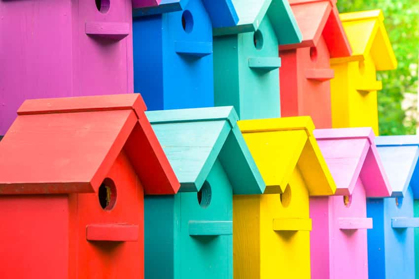 An array of colorful birdhouses that attract birds