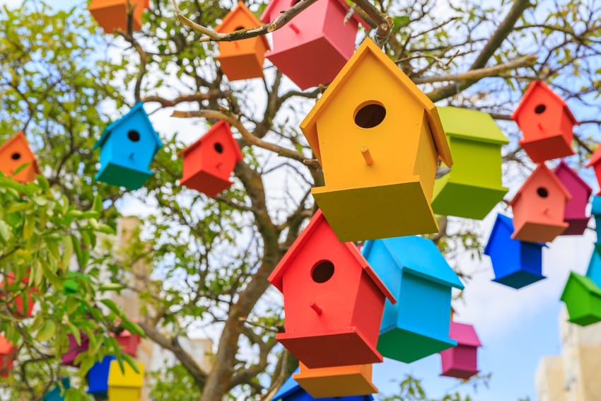 Colorful birdhouses hanging by tree branches