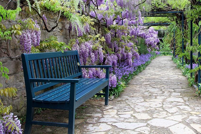 Dark blue bench on garden path