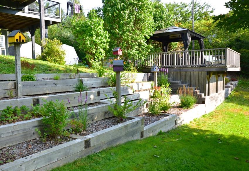 Outdoor wooden deck with pergola near custom garden