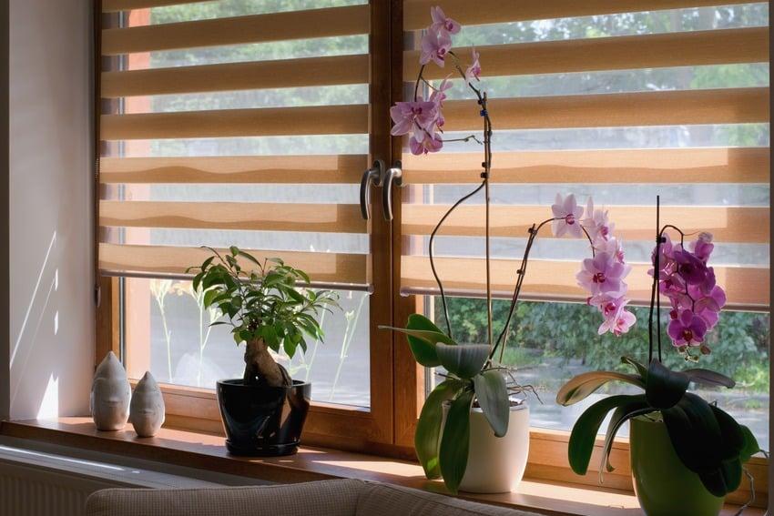 Window roller sheer shade