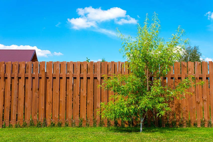Stained wood fence with slats