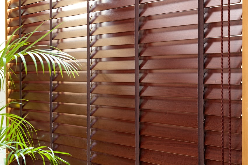Different types of window shades