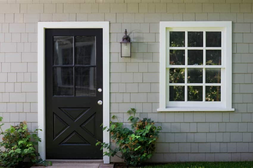 Black glass front door window outdoor plants