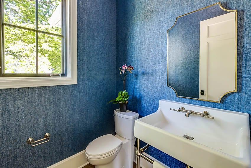 Blue bathroom with elongated toilet basin sink