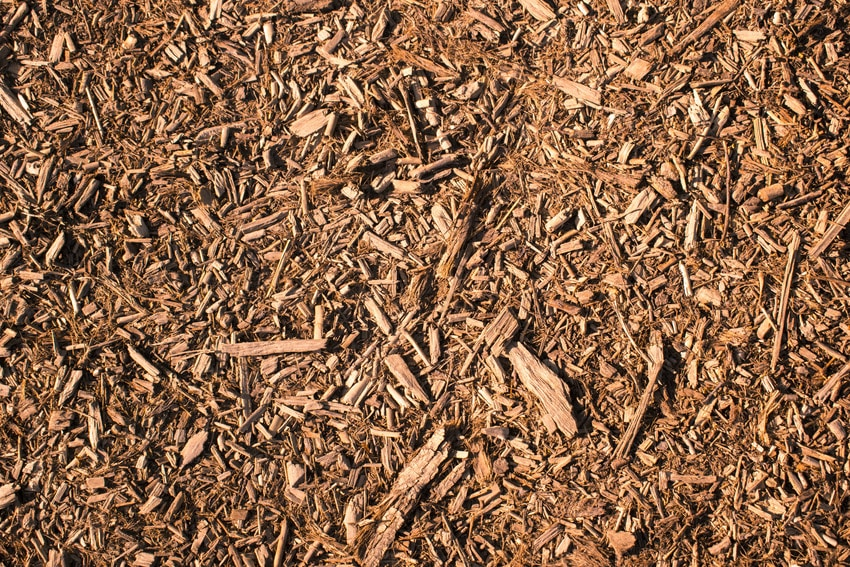 Brown woodchip natural mulch texture