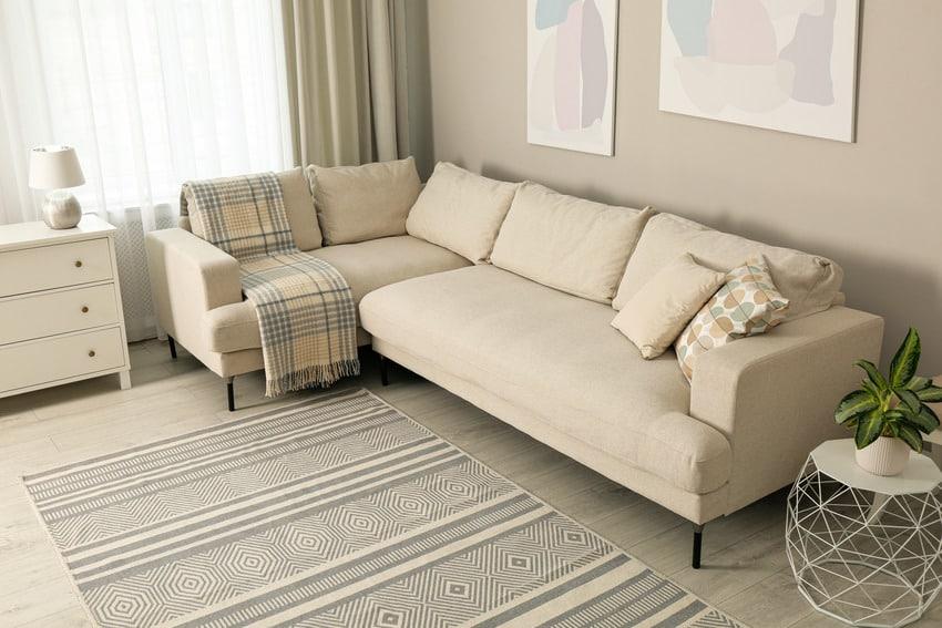 Cozy living room with beige sofa decorative plant and coastal rug
