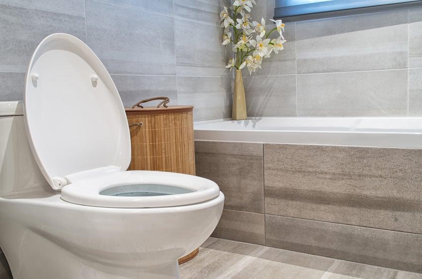 Contemporary bathroom interior with toilet and bathtub
