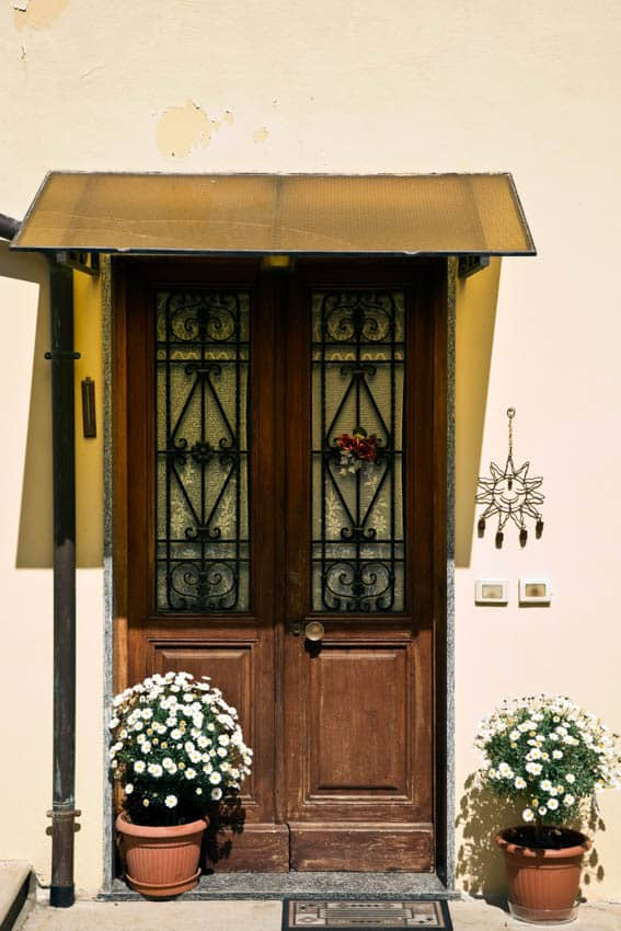 Glass and wrought iron door