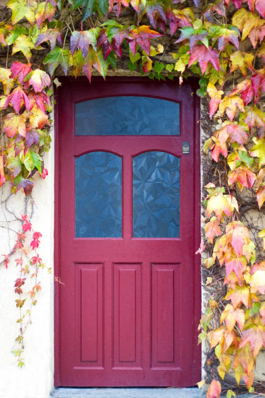 Glue chip glass red door with autumn leaves