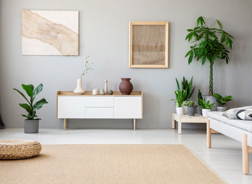 light grey living room interior with fresh green plants two modern posters white cupboard and a wicker footrest placed on big carpet on the floor