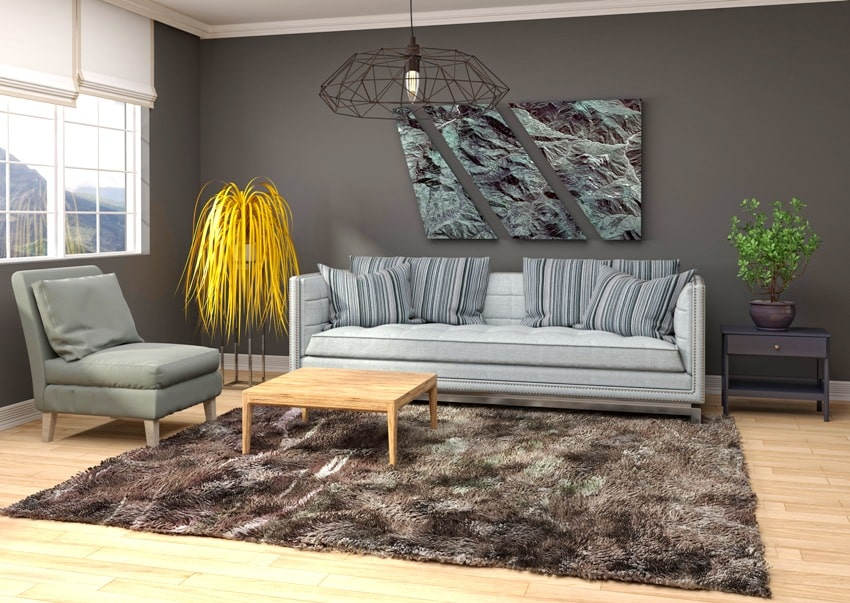 living room interior with gray walls dark brown capet on wooden floor and furniture