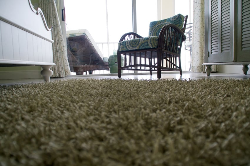 Low angle view of shag carpet on floor