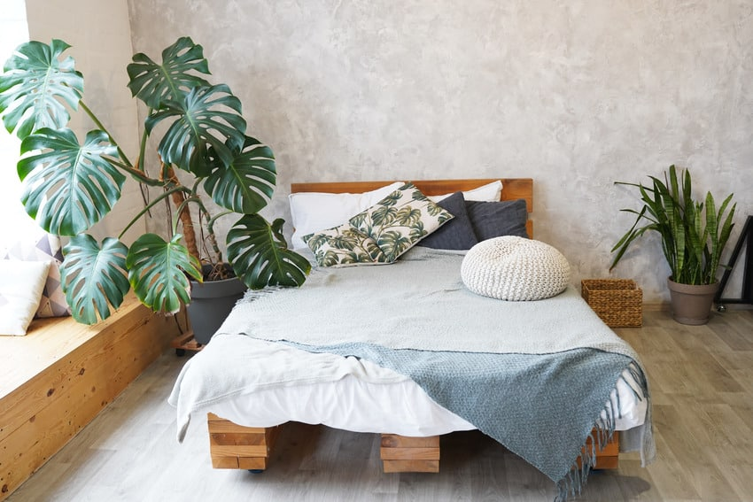 Modern cozy bedroom interior decorated with plants with wooden bed