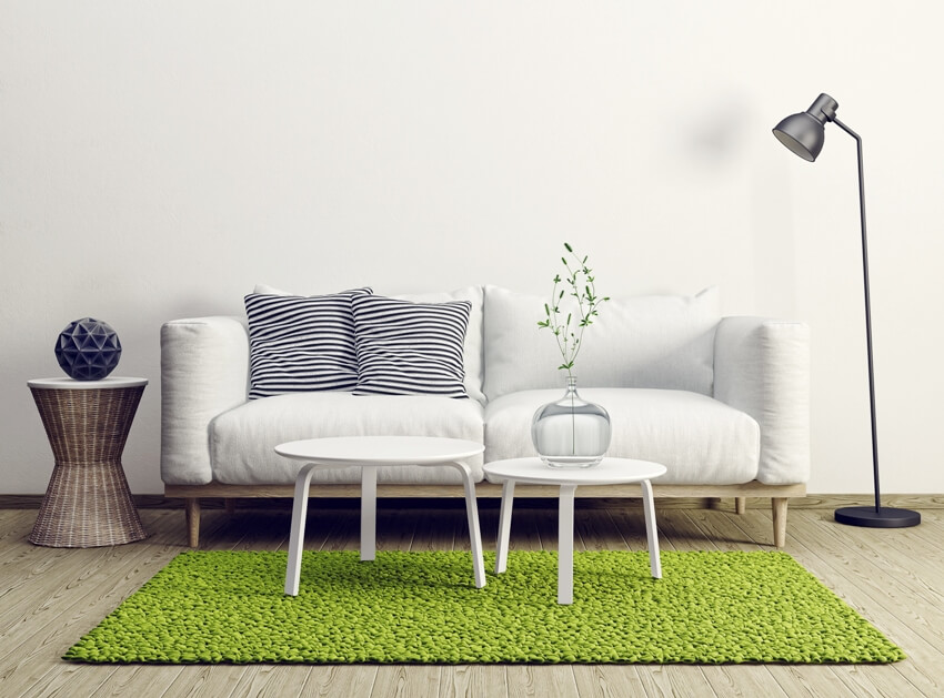 Modern living room interior with furniture and light green carpet