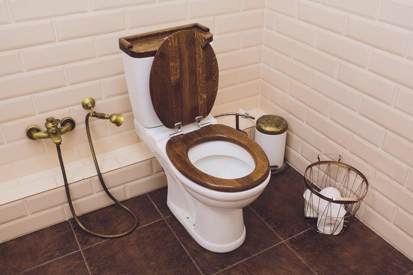Modern stylish bathroom interior with wooden toilet seat