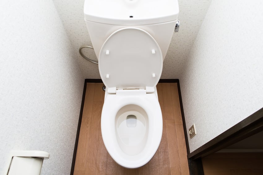 Oval shaped toilet seat in bathroom