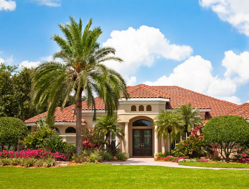 Palm tree on luxury house lawn