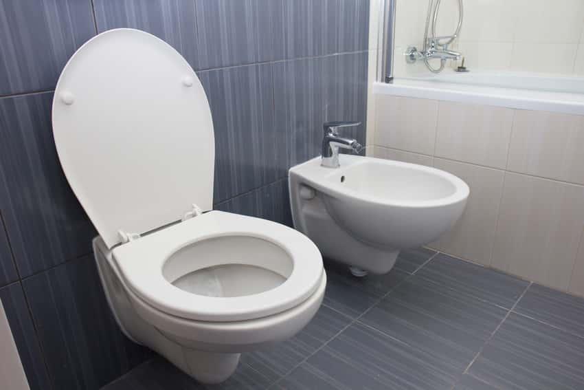 Round shaped toilet seat in modern luxury bathroom