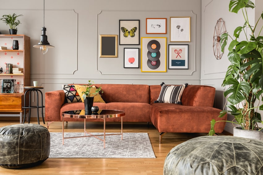 Stylish and cozy living room with framed posters lighting fixture plants and rug