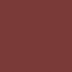 Benjamin Moore Parisian Red (CSP-1170)