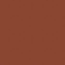 Benjamin Moore Toasted Chestnut (2174-10)